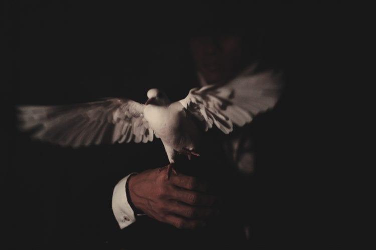 Magia cu porumbei